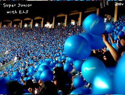 ELF, Komunitas Fans Super Junior
